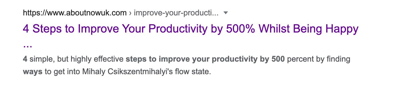 An example of meta description on a Google search